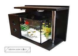 idee deco aquarium vernis noir bois
