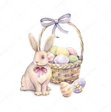 rabbit with easter basket isolated on a white background color