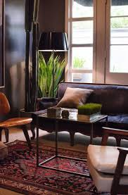 Apartment Therapy Living Room Office 640 Best Home Interiors With Plants Images On Pinterest Plants