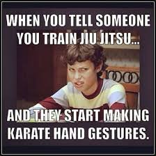 Karate Memes - bjj meme brazilian jiu jitsu survival guide