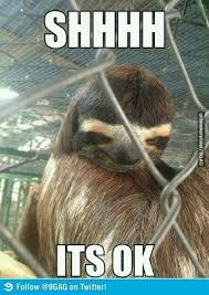 Asthma Sloth Meme - rape sloth rape sloth pinterest sloth sloth memes and memes