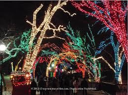 brookfield zoo winter lights 50 fun things to do this winter in chicago top ten travel blog