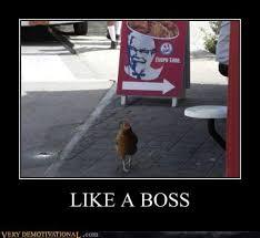 Chicken Meme Jokes - funny chicken meme