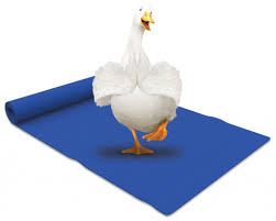 aflac commercial actress in gym aflac s duck does yoga caign with kelly rutherford and kristen