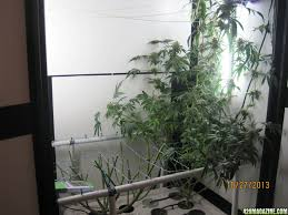Superclosets by Led Trinity Grow Round 1 Page 39