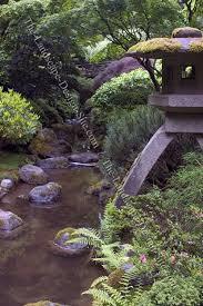 a japanese garden stream