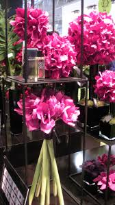 10 best fragrant products i love images on pinterest orchids