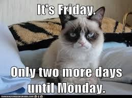 Grumpy Cat Friday Meme - happy friday from grumpy cat cats funny friendspiration