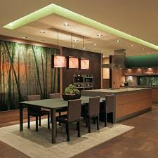 kitchen modern u0026 luxurious with wall mural mixed woods