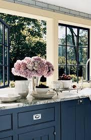 navy blue kitchen cabinets kitchen blue kitchen cabinets home design ideas wonderful 99