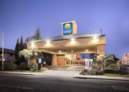 Comfort Inn Story City Comfort Inn U0026 Suites Oakland Airport Ca Booking Com