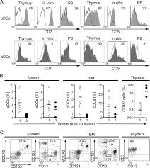 spatially restricted jag1 notch signaling in human thymus provides
