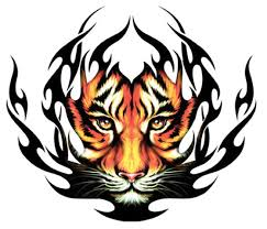 tiger and lion tattoo designs in 2017 real photo pictures
