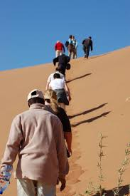 holidays for one best tour operators for travelling