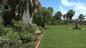 Bermuda Botanical Gardens David Lahuta Tours The Bermuda Botanical Gardens