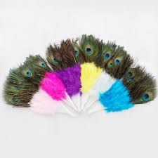 peacock feather fan woosee 5pcs factory direct sale top quality colors peacock feather