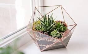 succulent planters succulent planters 15 unique and creative succulent planter ideas