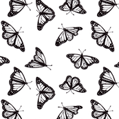 monarch butterfly black and white wallpaper zandloopster