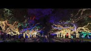 zoo lights houston 2017 dates zoo lights returns to the houston zoo story kriv