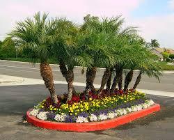flower landscaping ideas idolza