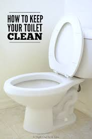 keep the bathroom clean toilet how to keep your toilet clean
