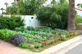 Small Vegetable Garden Ideas Pictures Backyard Vegetable Garden Ideas For Small Yards Small Vegetable