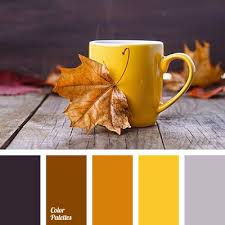 1758 best color palettes images on pinterest colors color