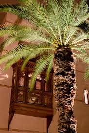 104 best moroccan andalusian architecture images on pinterest