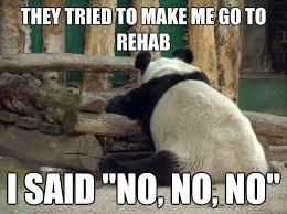 I Said No Meme - they tried to make me go to rehab i said no no no reluctant