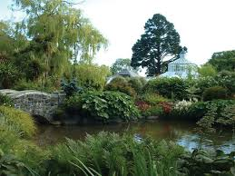 Dunedin Botanic Gardens Dunedin Botanic Gardens What S New Zealand
