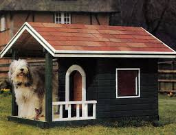 House Design With Windows 30 Dog House Decoration Ideas Bright Accents For Backyard Designs