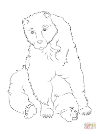 sitting brown bear coloring page free printable coloring pages