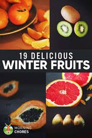 winter fruits list 19 delicious fruits you can eat u0026 grow in winter