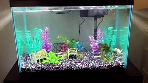r j enterprises fusion 50 gallon aquarium tank and cabinet gallon aquarium rj enterprises fusion gallon aquarium tank and