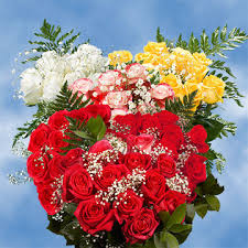 how much does a dozen roses cost s day special 6 dozen roses best price 72 roses fillers 3