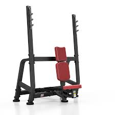 Sports Authority Bench Press Shoulder Bench Press 407 85 Fitness U0026 Gym Equipment Shop