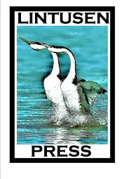 my novel series grace awakening shawn l bird