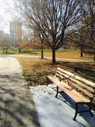 bench dedication program chicago parks foundationchicago parks