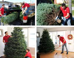 get your real tree delivered today