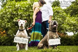 save the date signs wedding accessories for your dog save the date signs