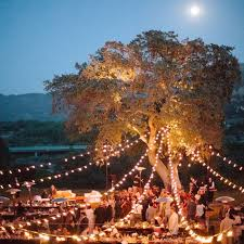 best 25 oak tree wedding ideas on marriage decoration