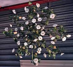neo romantic wrought iron chandelier with ceramic flowers modernism