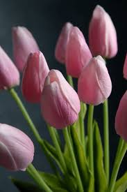 tulips flowers touch silk flower mini pink tulip bouquet 15
