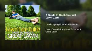 Lawn Care Programs For Do It Yourself A Guide To Do It Yourself Lawn Care Youtube