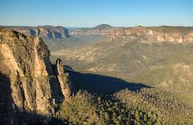blue mountains native plants pulpit walking track learn more nsw national parks