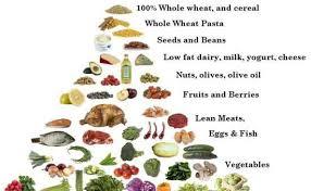 top diet foods low carb diet food list