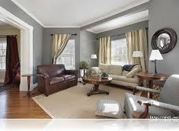 nice gray and brown living room ideas with light brown sofa