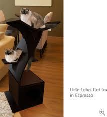 stylish cat tree pink sneakers lotus cat shelves wf