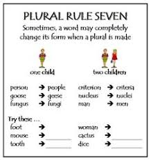 spelling rule 38 parkhurst state phonics spelling and