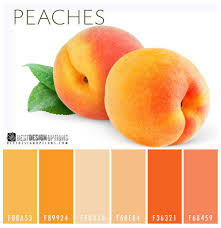 peaches color palette sweet but sophisticated the color peach is